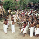 Elefantenparade in Trivandrum, Kerala