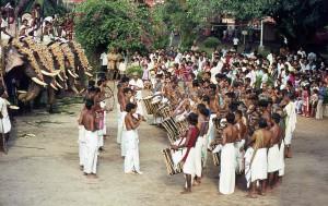 Elefantenparade in Trivandrum, Kerala