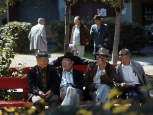 Senior Chinese (S.F.)
