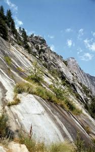 Granitfelsen (Yosemite National Park)