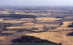 Kornfelder in Schleswig-Holstein