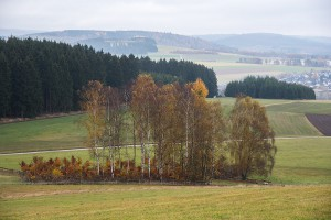 Wittgensteiner Land